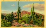 United States – Arizona – Phoenix – Camelback Mountain and Desert