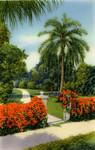 The Garden Beautiful, Florida