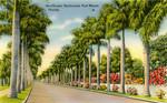 MacGregor Boulevard, Fort Meyers, Florida