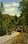 Indian Gap Highway and Tunnel in the Great Smoky Mountains National Park