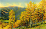 Autumn Scene in Yellowstone National Park, on Dunraven Pass