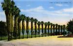 United States – California – La Jolla – Park