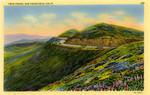 Twin Peaks, San Francisco, California