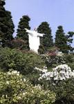 Japan - Susono - Fujin Seishin Girls School - The Image of the Holy Heart of Jesus