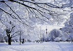 Japan –  Sapporo – Odori Park in Early Winter