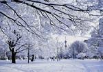 Japan - Sapporo - Odori Park in Early Winter