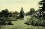 Japan - Yokohama - Bluff Garden