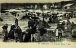 Cancale - Le Triage des Huîtres