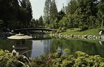 Vancouver – Nitobe Gardens