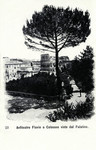 Italy – Rome – Anfiteatro Flavio o Colosseo visto dal Palatino