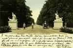 Dresden – Haupt-Allee im Grossen Garten