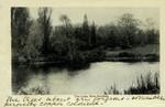 London – The Lake, Kew Gardens