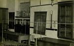 Roehampton – Science Room