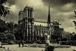 Paris - Notre Dame vue du square René-Viviani