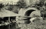 Antony - Pont du Chemin de fer et Lavoir sur la Biévre
