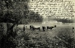 Antony - La Prairie du Moulin