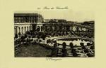 Versailles - Parc de Versaille - L'Orangerie