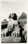 Egypt - Cairo - Great Sphinx of Giza and the Pyramids