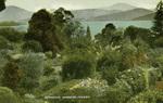 Australia – Botanical gardens, Hobart