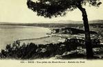 Nice - Vue prise du Mont-Boron - Etrée du Port