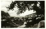 Capri – Panorama