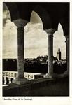 Sevilla - Vista de la Catedral