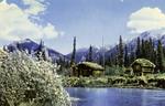 Alaska – Trapper's Cabin
