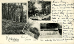 Kenwood Convent of the Sacred Heart - Albany, New York - Views of Grounds and Falls